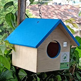 PetNest HG1 Hanging Bird House, Wood (17 cm x 17 cm x 15 cm) (Blue)