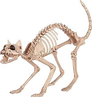 Crazy Bonez Skeleton Cat