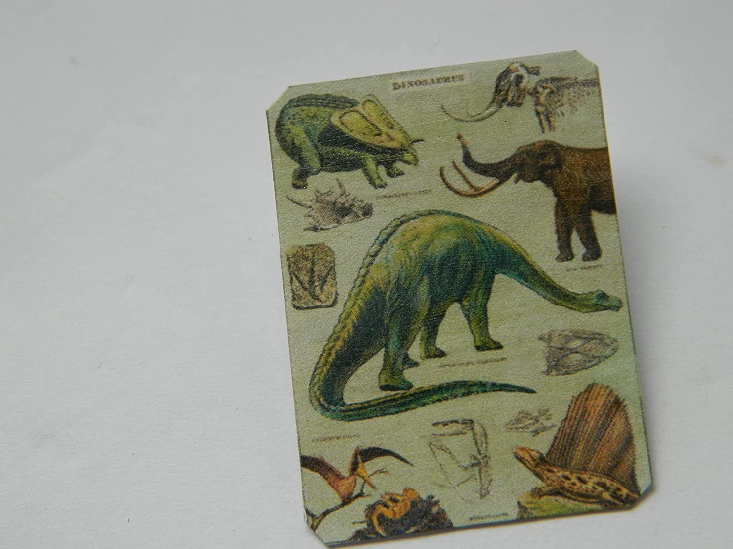 Lapel Pin Dinosaur Poster Vintage Excellent School sold out