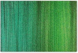 "Darkyazi 23.6"" x 35.4"" Colorful Doormats Entrance Front Door Rug Funny Outdoors/Indoor/Bathroom/Kitchen/Bedroom/Entryway F..."