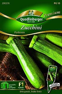 Zucchini, Partenon Quedlinburger Saatgut Samen 290376