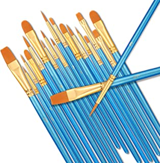 StarVast Painting Brushes, 20pcs Professional Acrylic Paint Brushes Set for Watercolor / Oil / Acrylic / Crafts / Rock /Face Painting and Gouache - Blue