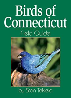 Birds of Connecticut Field Guide