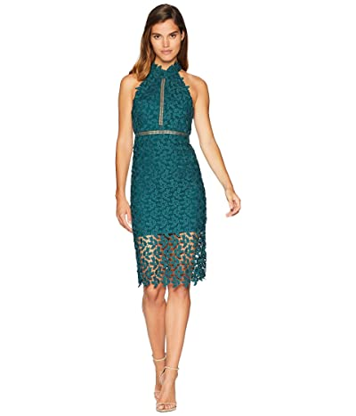 Bardot Gemma Dress (Lily Green) Women