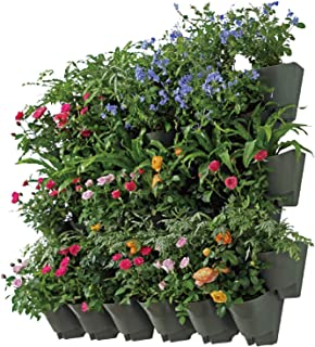 Worth Indoor Outdoor Vertical Wall Hangers with Pots Included Wall Plant Hangers Each Wall Mounted Hanging Pot Has 42 Pockets