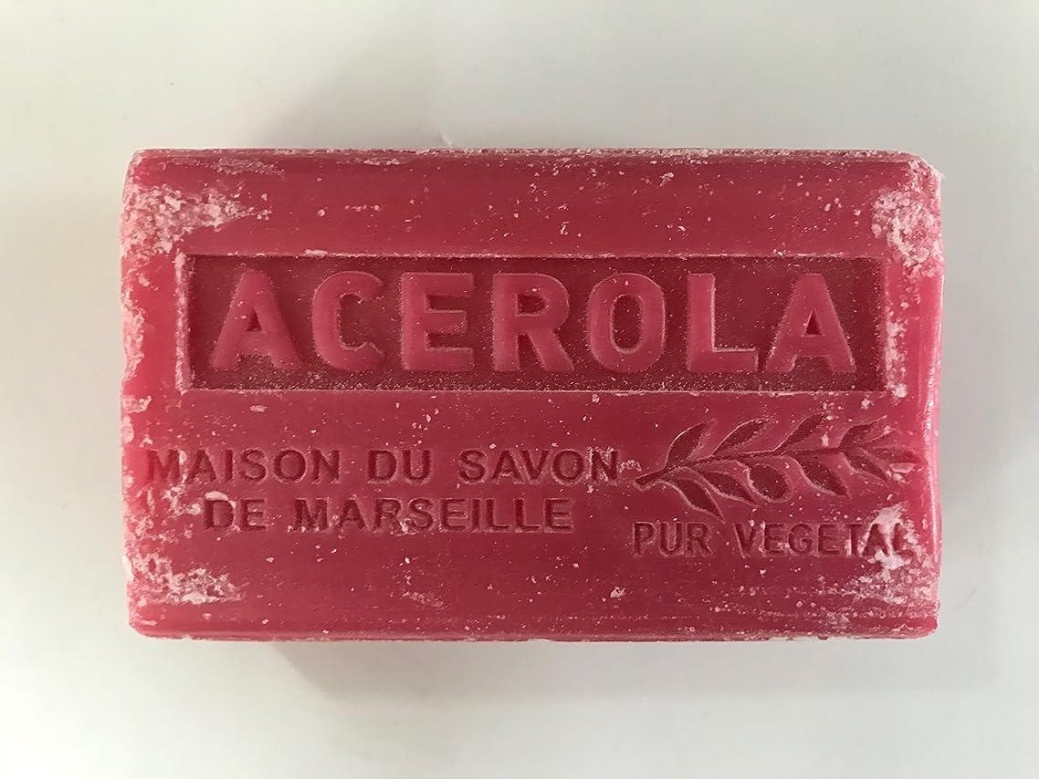 キャラクター許可する運搬Savon de Marseille Soap Acerola Shea Butter 125g