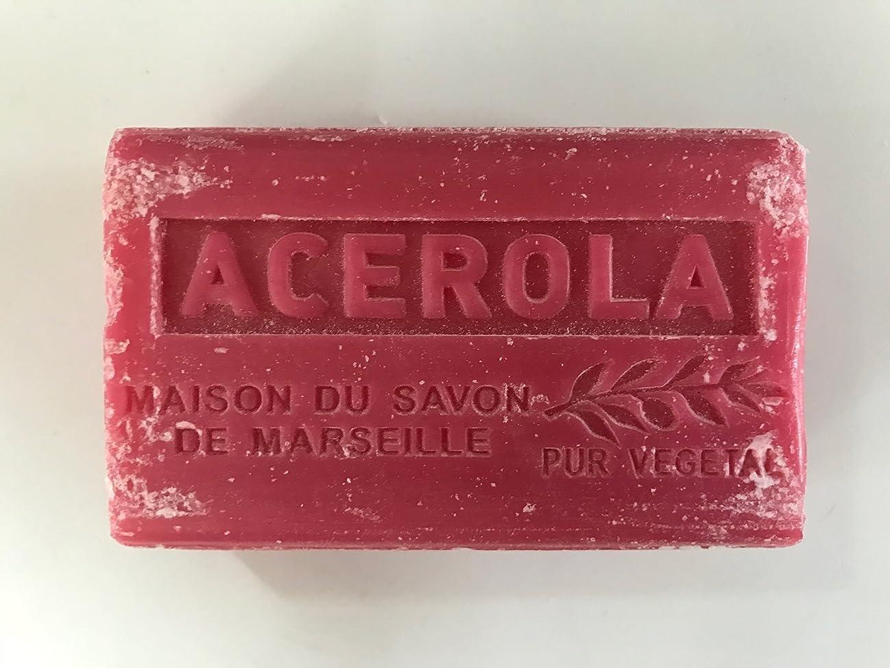 からかう最大化する栄光のSavon de Marseille Soap Acerola Shea Butter 125g