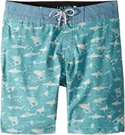 Single Fin Layday Boardshorts (Big Kids)