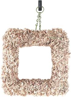 SuperMoss (22352) Sphagnum Moss Living Wreath 13