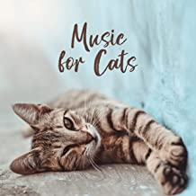 Music for Cats - Cat-friendly Melodies, Created to Relax, De-stress, Sleep and Rest for Your Kitty
