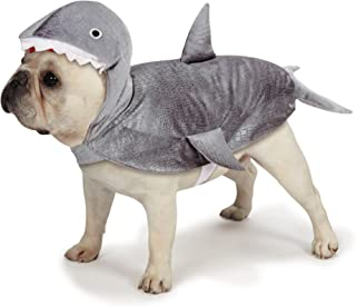 """Casual Canine Casual Canine Shark Costume for Dogs, 12"""" Small"""