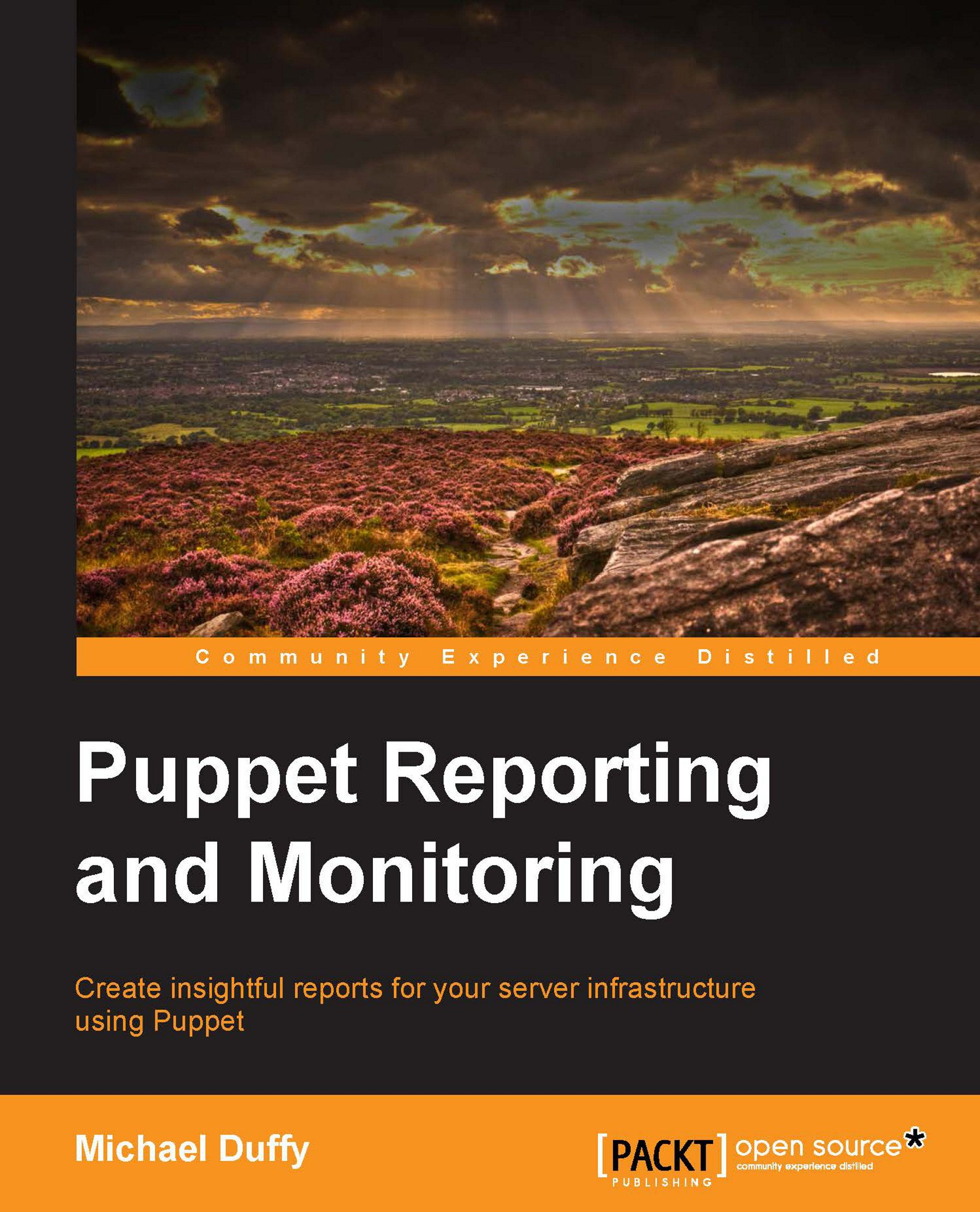 Image OfPuppet Reporting And Monitoring (English Edition)