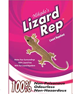 pest control for lizards india