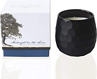 Botanique Midnight on The Seine | Luxury Scented Candle | 16 oz Coconut Soy Blend | Matte Black Art Glass