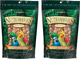 LAFEBER'S 2 Pack of Tropical Fruit Nutri-Berries Small Bird Food, 10 Ounces Each, for Parakeets, Cockatiels, Lovebirds and...