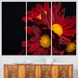 Designart Red Velvet Chrysanthemum Flowers-Floral Glossy Metal Wall Art, 36x28-3 Panels