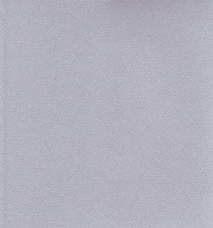 エスケント スターライト色画用紙 八つ切 100枚入 银