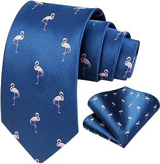 HISDERN Set di fazzoletti e fazzoletti da taschino da uomo con fazzoletti da cravatta per matrimonio