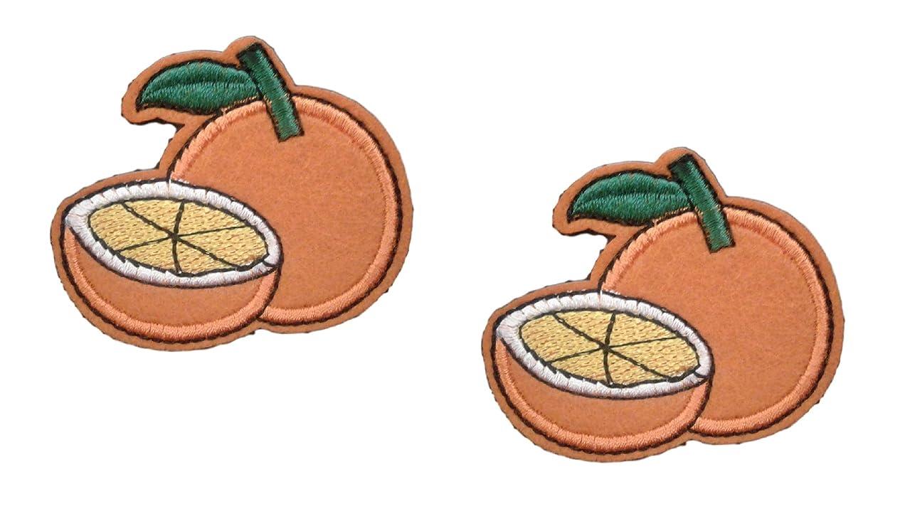2 pieces ORANGE Iron On Patch Fabric Applique Cut Tangerine Citrus Fruit Food Motif Children Decal 2.2 x 1.9 inches (5.5 x 5 cm)