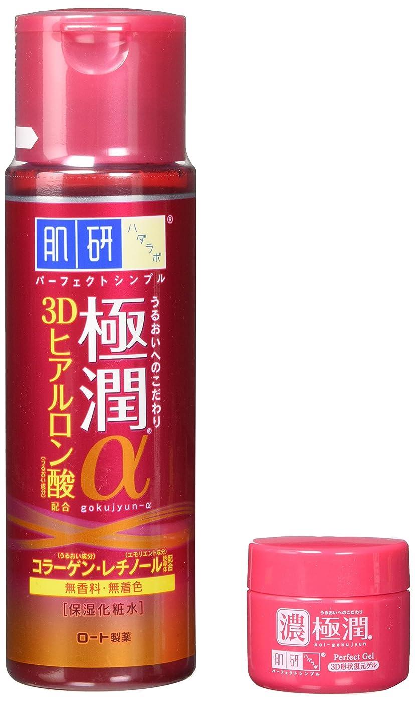 植物の賞賛抵抗ロート製薬 肌研 極潤α 化粧水 企画品 170ml