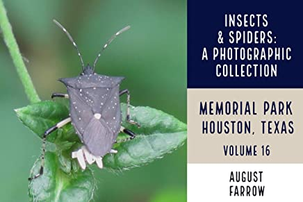Insects & Arachnids: A Photographic Collection: Memorial Park: Houston Texas - Volume 16 (Arthropods of Memorial Park) (English Edition)