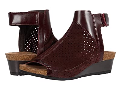 Naot Oz (Burgundy Suede Perforated/Bordeaux Leather) Women
