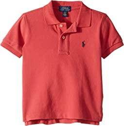 Cotton Mesh Polo Shirt (Toddler)