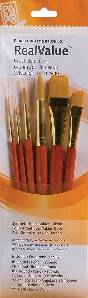 定義触覚人口PRINCETON(プリンストン) Brush Set-9153 6本セット