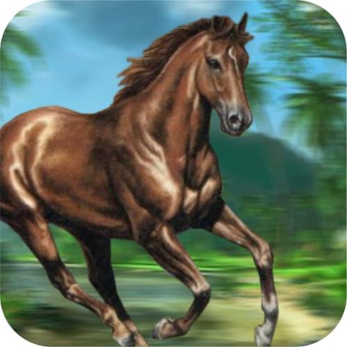 Jungle Pferde Run 2016 - Pferderennen Spiel