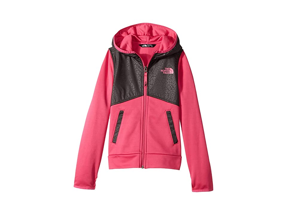 The North Face Kids Kickin It Hoodie (Little Kids/Big Kids) (Petticoat Pink/Graphite Grey (Prior Season)) Girl