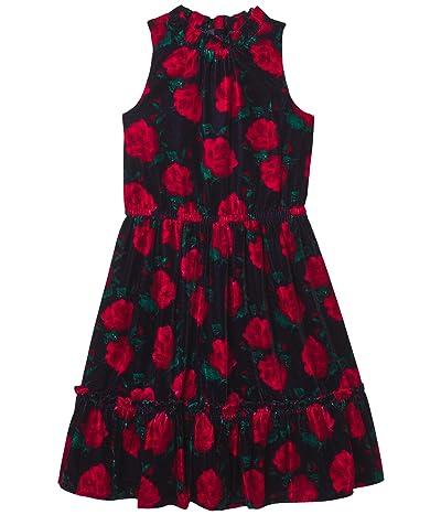 Janie and Jack Velvet Floral Print Dress (Toddler/Little Kids/Big Kids) (Multi) Girl