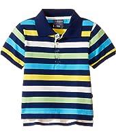 Toobydoo - Multi Stripe Short Sleeve Polo (Infant/Toddler/Little Kids/Big Kids)