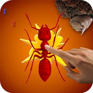 Kill Ants Bug - Game For Kids
