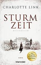 Sturmzeit: Roman (Die Sturmzeittrilogie 1) (German Edition)