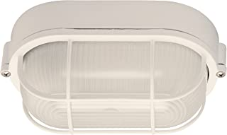 Canarm IOL16WH The Outdoor 1-Bulb Flush Mount Exterior Light with Frosted Glass Globe, White
