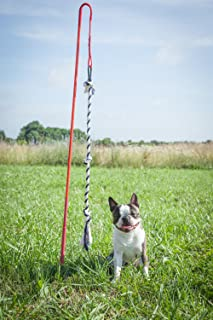 Best dog tug pole Reviews