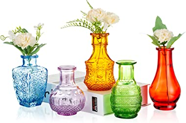 Glass Single Bud Glass Vase Colorful Set of 5 Decorative Rustic Flower Vases Small Mini Table Floral Vase Barcelona Style for