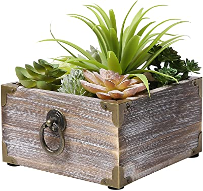 MyGift Faux Assorted Potted Succulent Plants in Rustic Wood Planter with Decorative Brass Accents