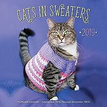 Cats In Sweaters 2019: 16-Month Calendar - September 2018 through December 2019