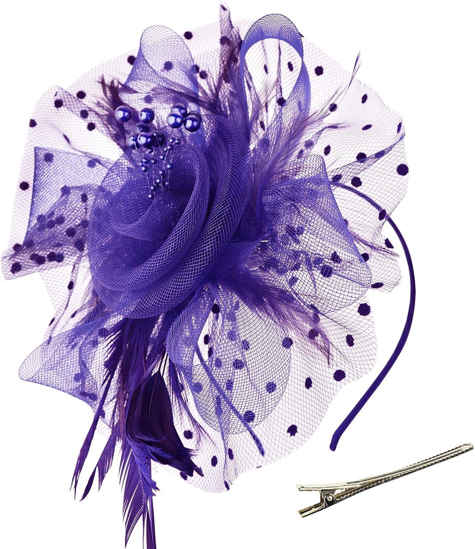 DRESHOW Fascinators Sombrero Tocados De Pinza Para El Pelo Cabeza De Mujer Novia Para Fiesta Boda Moderno Con Pluma Royal Ascot Para Niñas y Mujeres