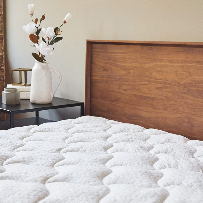 ViscoSoft Bombing free shipping Free shipping Bamboo Mattress Pad Twin Extra Pillowtop Plush - Mattr