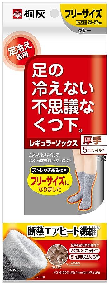 深遠シード香ばしい桐灰化学 足の冷えない不思議なくつ下 レギュラーソックス 厚手 足冷え専用 フリーサイズ グレー 1足分