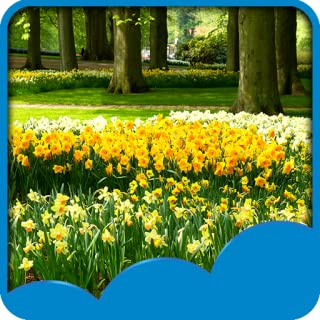 live spring wallpaper for android