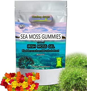 Sea Moss Gummies - Irish Sea Moss - Raw Organic Wildcrafted Sun-Dried Seamoss Powder and Gel - with Bladderwrack, Burdock ...