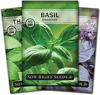 Sow Right Seeds - Basil Seed Collection to Plant - Genovese Basil, Thai Basil, Opal Basil, Non-GMO Heirloom Seeds - Instru...