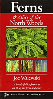 Ferns & Allies of the North Woods: A Handy Field Reference to All 86 of Our Ferns and Allies (Naturalist Series)