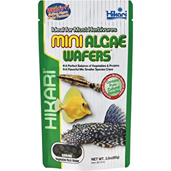 Hikari Usa Inc AHK21416 Mini Algae Wafers 3 -Ounce