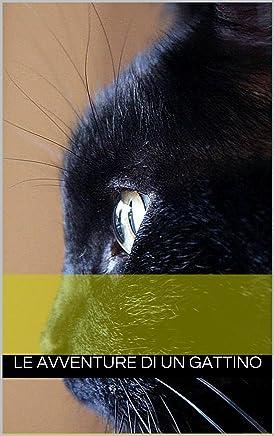 Le avventure di un gattino
