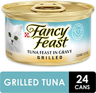 Best Tasting Canned Cat Food [2021 Picks]