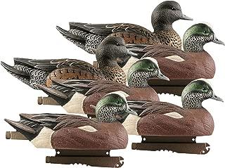 Avery Greenhead Gear Life-Size Duck Decoy,Wigeons,1/2 Dozen